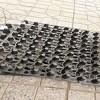 北京小区绿化种植凹凸型排水板@2公分1000克塑料排水板