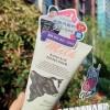 葳兰氏氨基酸牛奶洗面奶,这款泰国洗面奶为何能红遍全国?